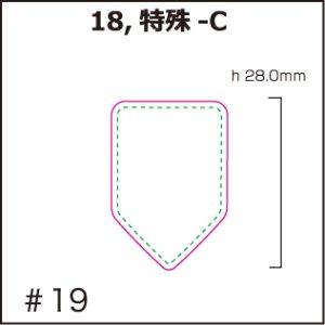画像1: [PI]ホログラム・特殊-C